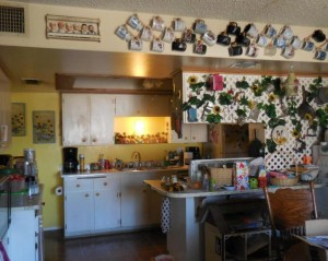 Isn't the owner concerned that an earthquake could take out her mug collection? Photo credit UglyHousePhotos.com